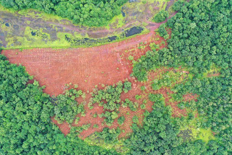 Plantation Drive at Sangod